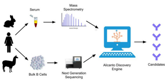 Alicanto workflow showing mass spec and next-gen sequencing